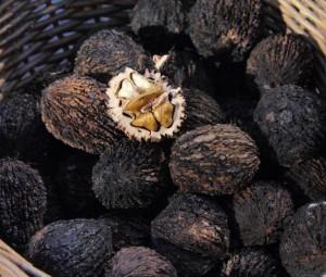 black walnut dye