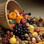 Fruits-Fall-Harvest